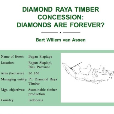 Diamond Raya Timber Concession: Diamonds are forever? (2005)
