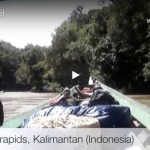 Mad Travel: the Mahakam River, Kalimantan (Indonesia)