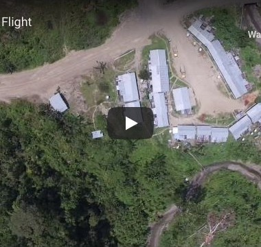 Riparian flight: fly-by and transect of riparian forest in Papua (Indonesia)