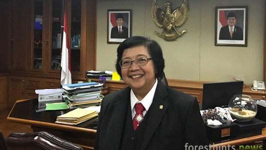 FH | Minister stops peat violations in Bornean orangutan habitat