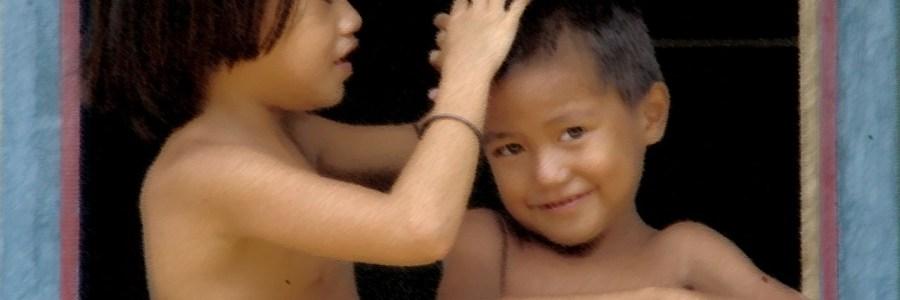 WP | US senators demand action after AP exposes palm oil abuses