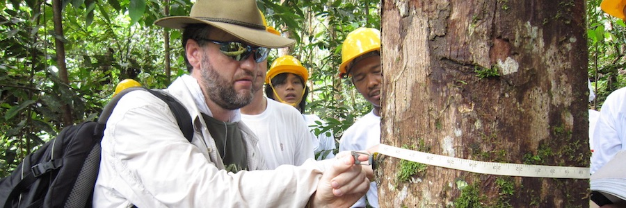 SD | Does biodiversity benefit when the logging stops? An analysis of conservation risks and opportunities in active versus inactive logging concessions in Borneo