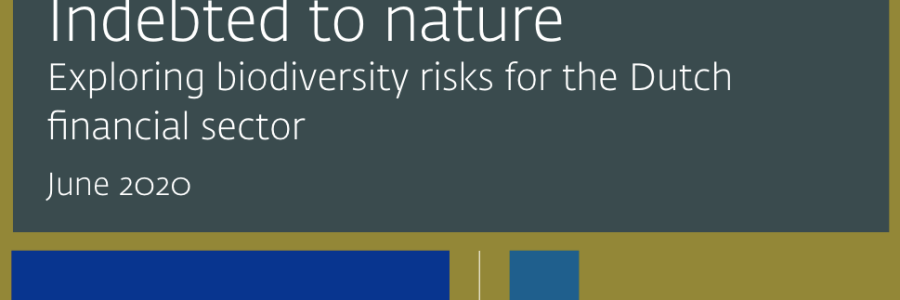 DNB | Indebted to Nature – exploring biodiversity risks for the Dutch financial sector