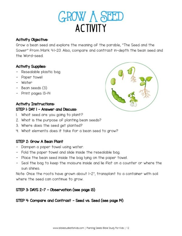 Planting Seeds Bible Study For Kids - Wildly Anchored