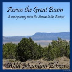 Great Basin cover