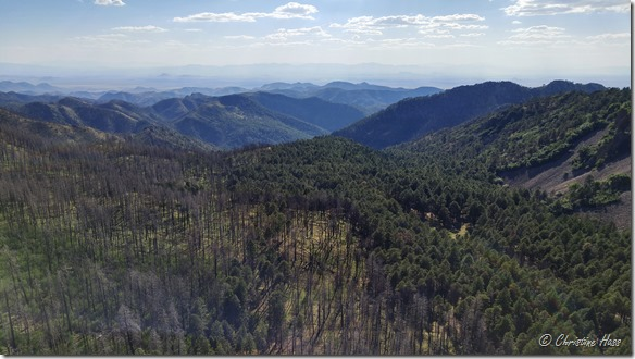 View from Barfoot Lookout, looking over Barfoot Park. Shows the patchy nature of the Horseshoe 2 wildfire.