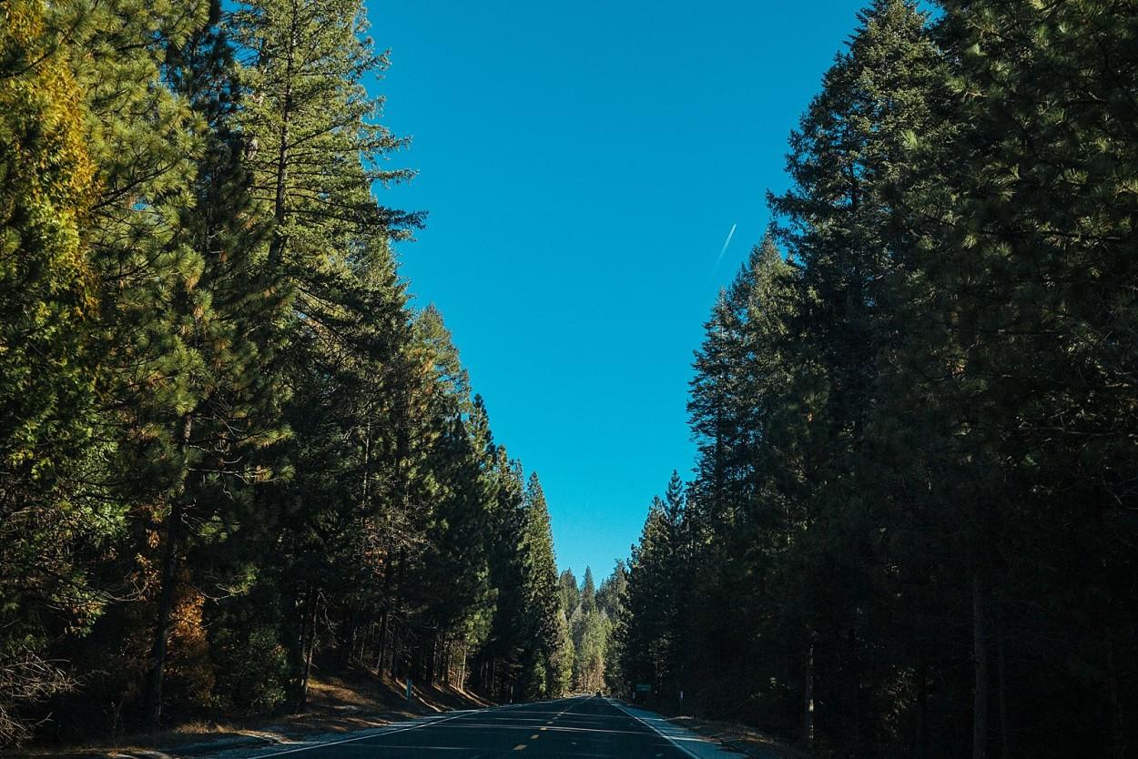 wild-native-photography-blog-yosemite_0005