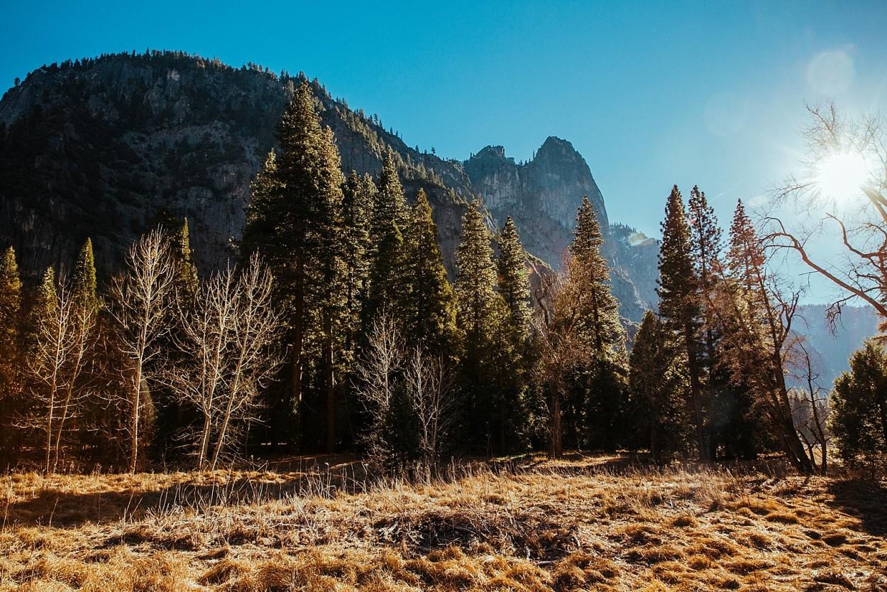 wild-native-photography-blog-yosemite_0018
