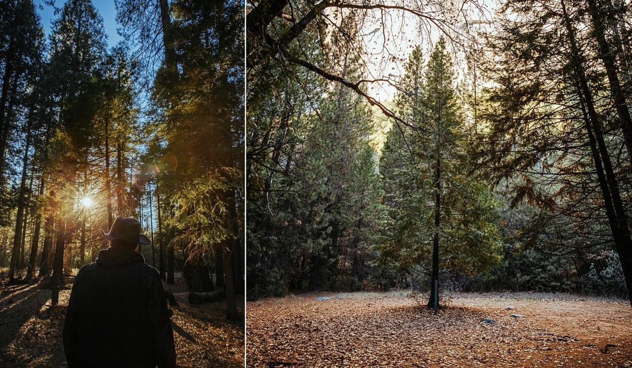 wild-native-photography-blog-yosemite_0024