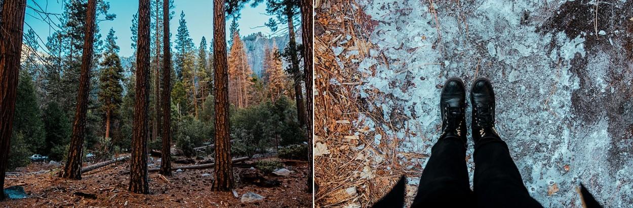 wild-native-photography-blog-yosemite_0025