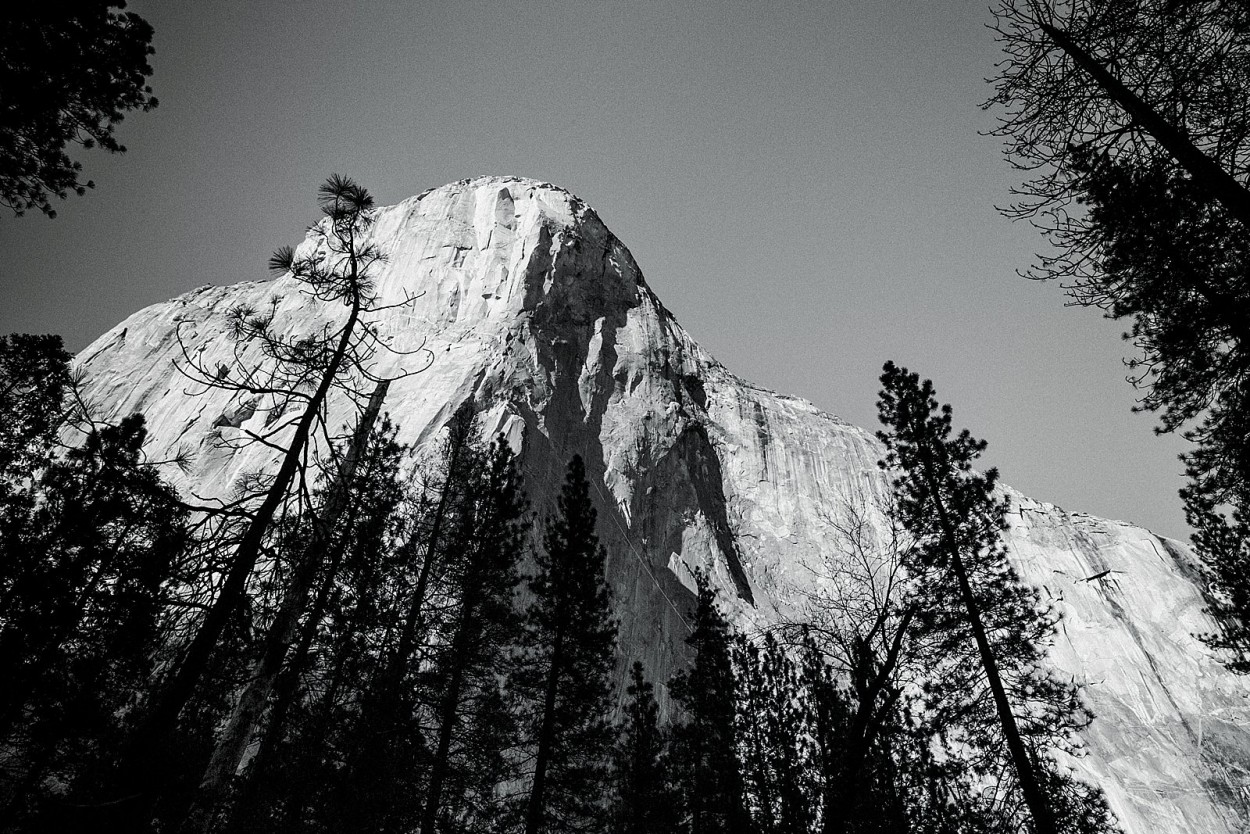 wild-native-photography-blog-yosemite_0030