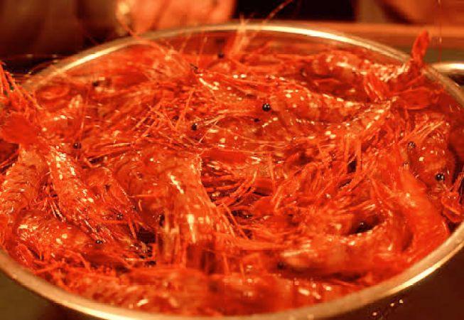 BC shrimp