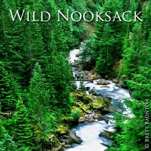 Nooksack River, Brett Baunton Photography