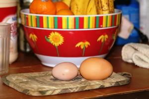 a hen's first egg