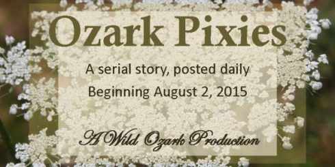 ozark pixies serial story advertisement graphic
