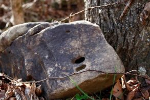 holey rock