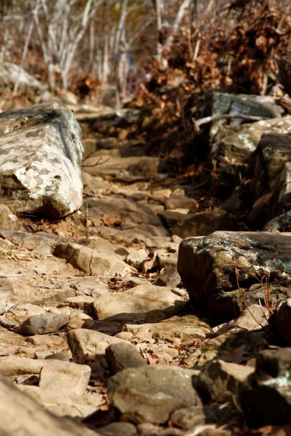 Rocky path at Kings River Falls Natural Area in Madison county Arkansas.