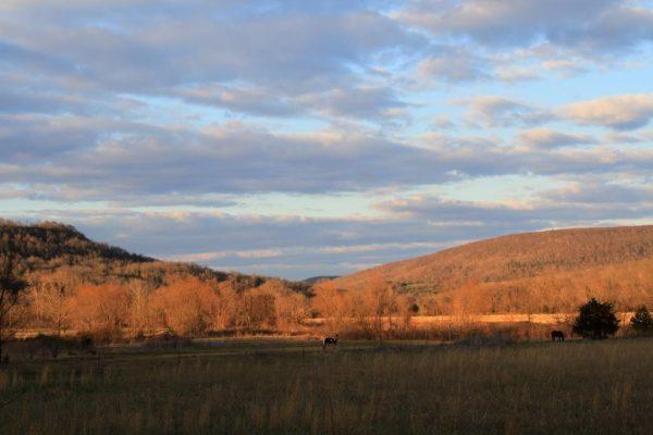 Backlit Valley