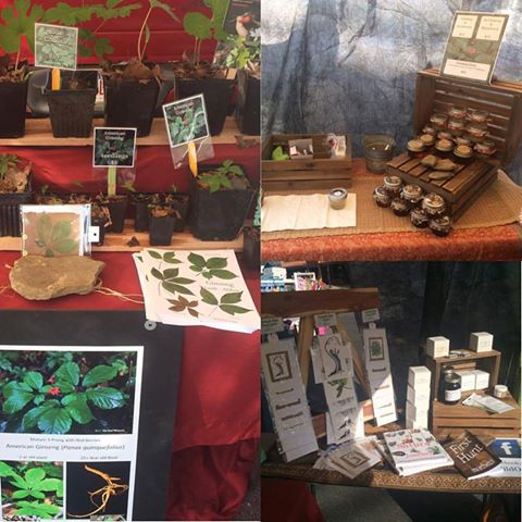 The Wild Ozark Nature Boutique Wares