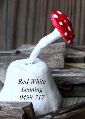 Red-Whte-Leaning-0499-717