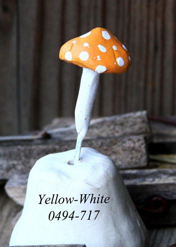 Yellow-Whte-0494-717