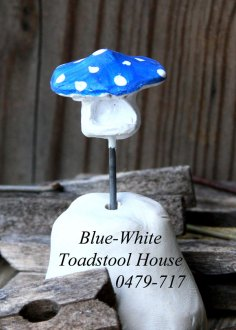 blue-white-toadstool-0479-7