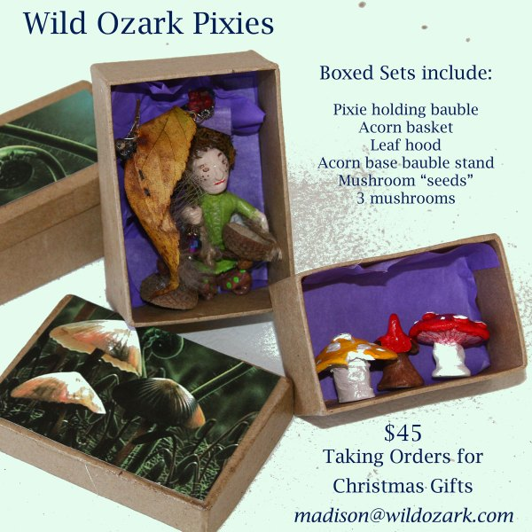 Boxed sets make great gifts!
