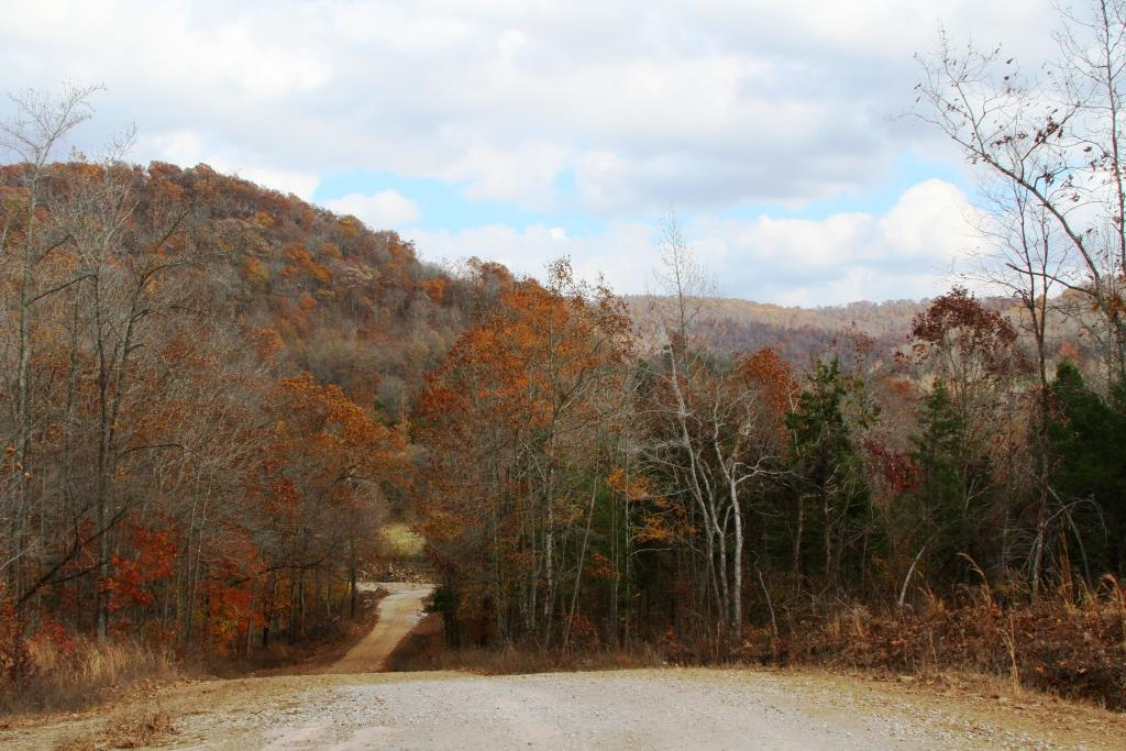 Featured image for my life hack page: The road to the Wild Ozark Nature Farm, where I co-create with Nature.