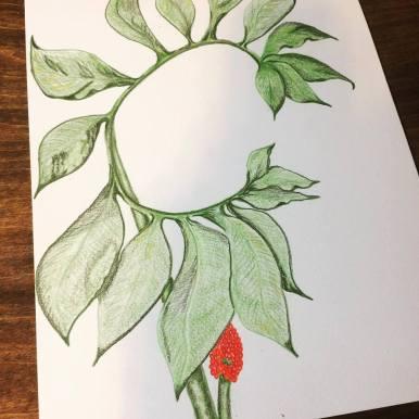 Progress on the green dragon drawing