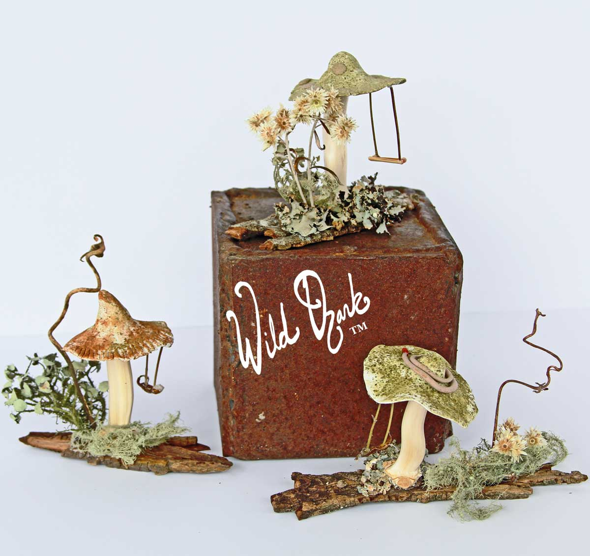 Fairy Swing Mushrooms- New Nature Art from Wild Ozark.