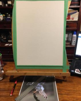 Blank canvas. Starting point.