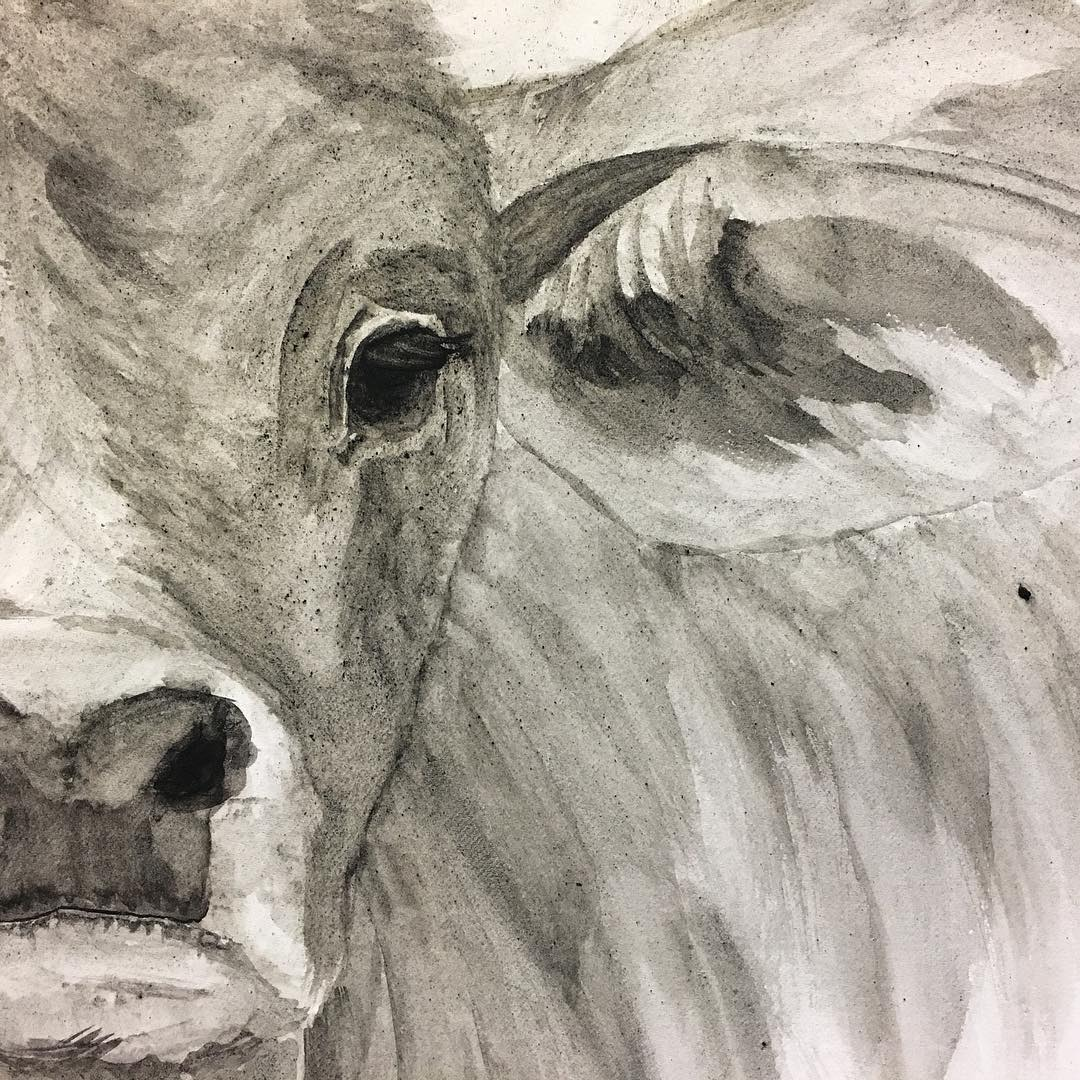 "Working on ""Brahman Baby's"" eyes and ears."