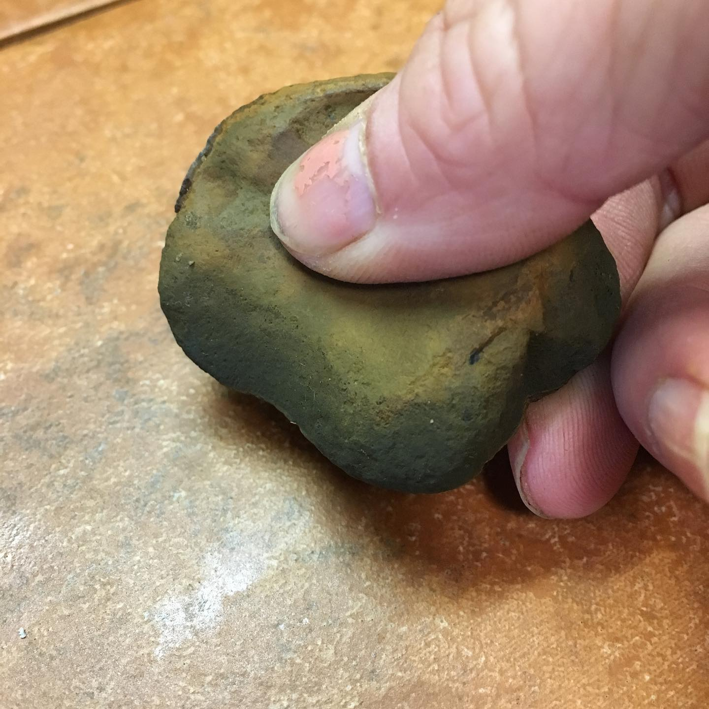 While out gathering earth pigments, I found this rock that might have once been used as a tool.