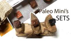 Paleo Mini's (SETS)