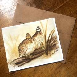 Note cards featuring my bobwhite quail painting.
