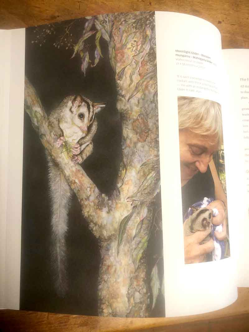 One of the page spreads from Celebrating Australia's Magnificent Wildlife.