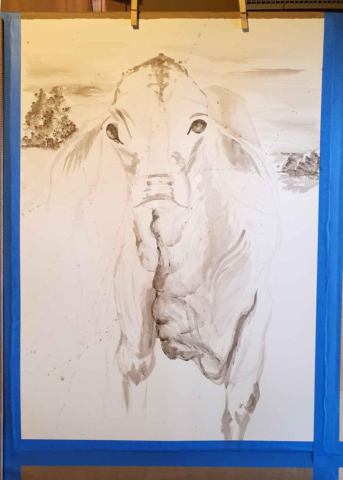 A cow portrait in progress, using bone pigments from Wild Ozark.