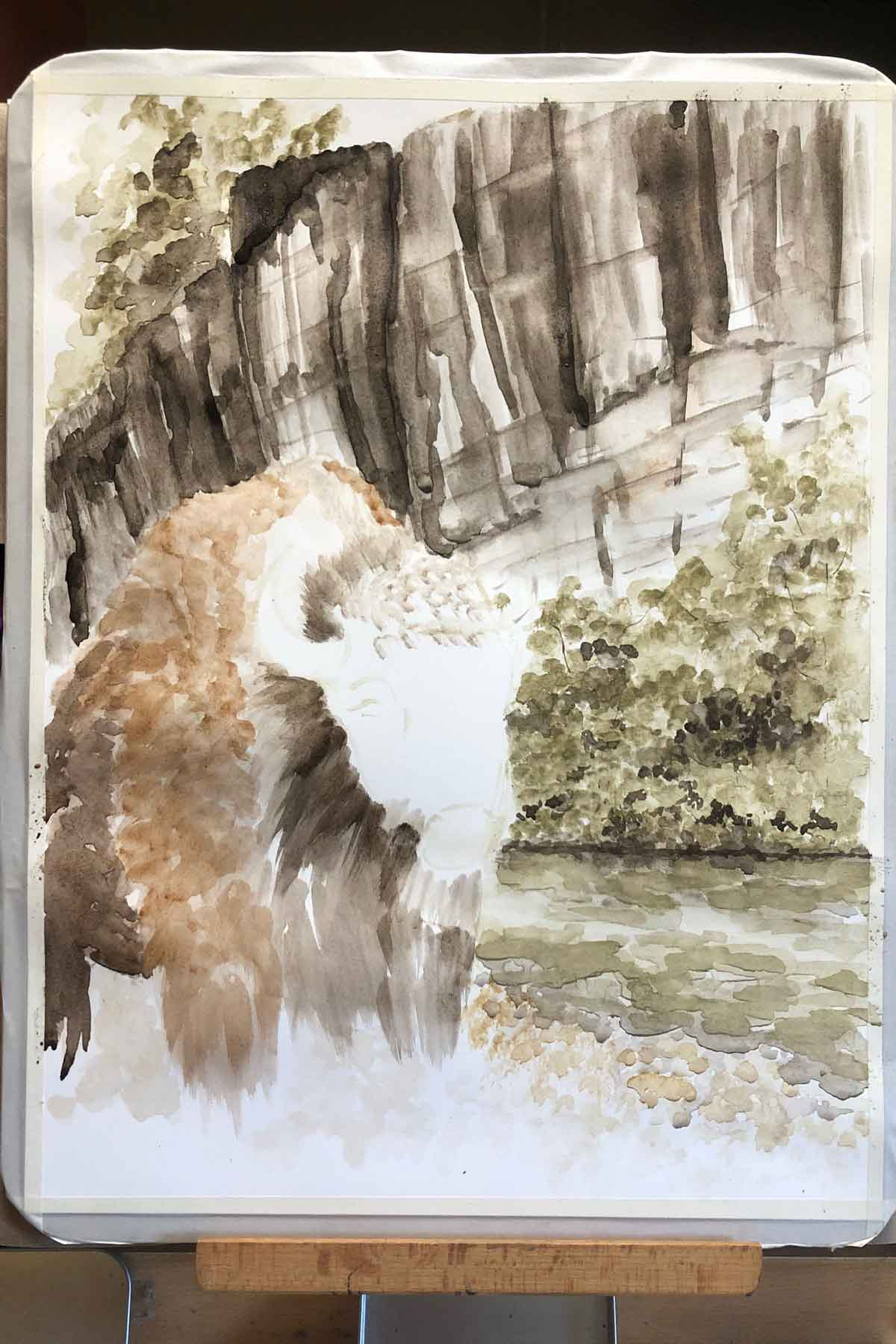 Blocking in color on the buffalo, namesake of the Buffalo National River.