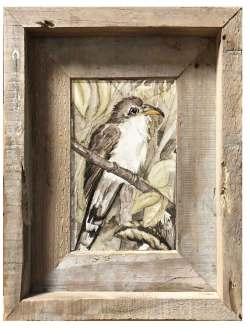 Original art by Madison Woods, Yellow-Billed Cuckoo (Rain Crow)