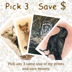 Pick any three of the same sized prints and save money.