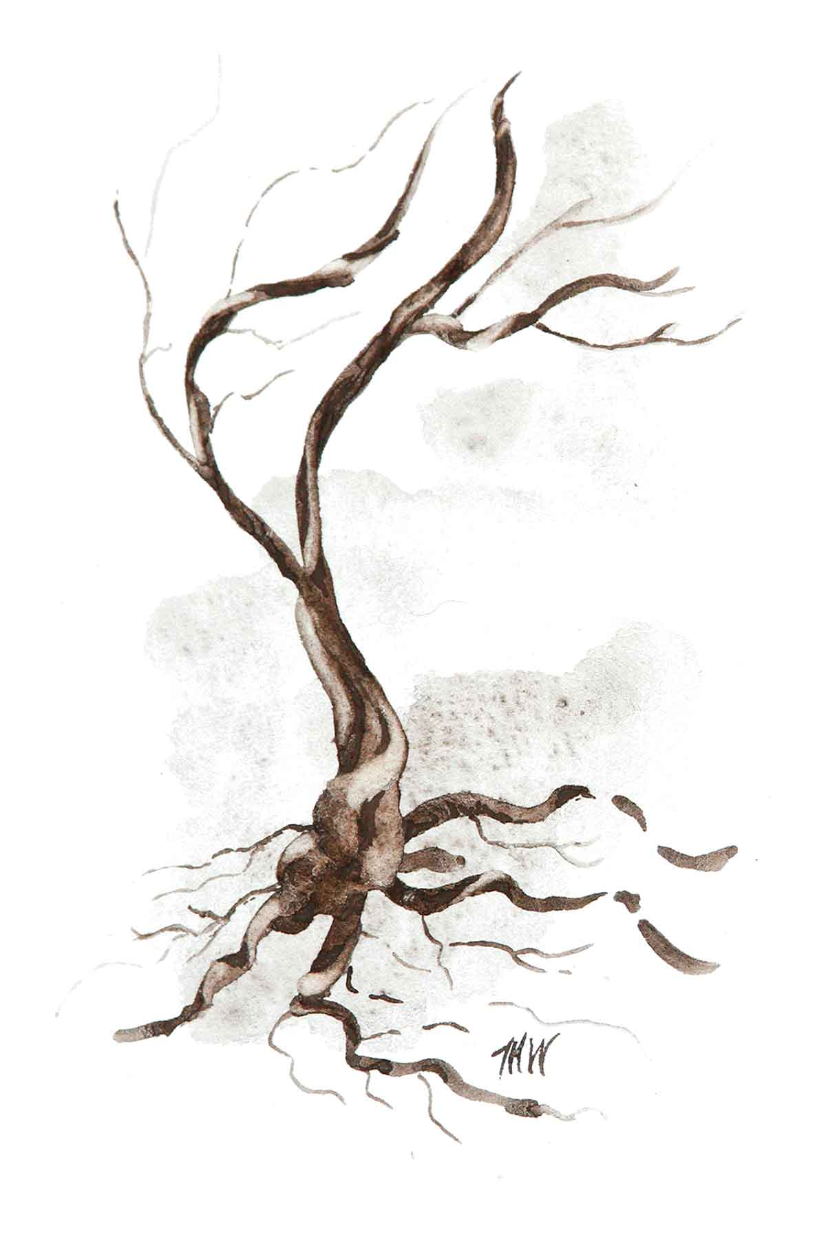 Monochromatic painting of a twisted tree using a black sandstone.