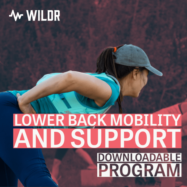 Lower Back Mobility And Support Downloadable Program