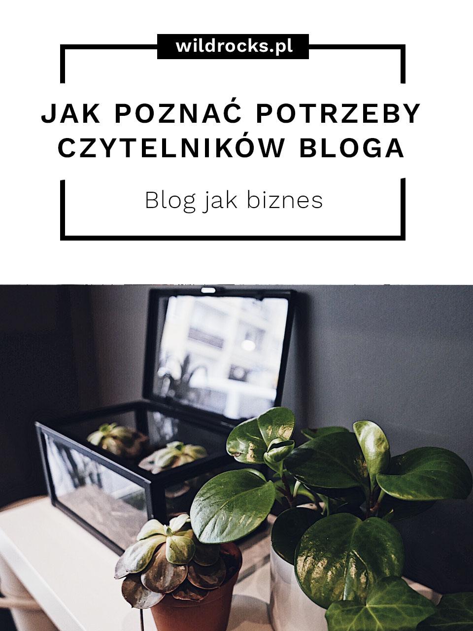 ak poznac potrzeby czytelnikow bloga