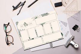 botaniczny plan zajęć do pobrania