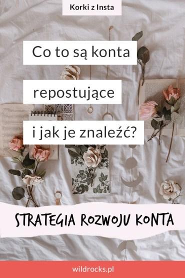 konta repostujace na instagramie strategia rozwoju konta