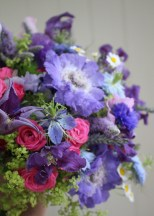 Bright blues and pink flowers