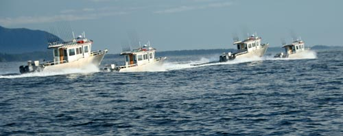 Four Boats Running Away in Sitka sound