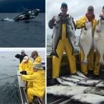 6-11-2016 Fishing fun whale show extraordinaire