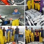 8-12-2016 Slammin salmon and releasing sharks