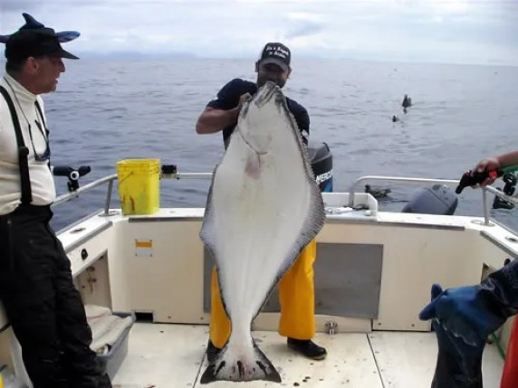Jeremy Holding Up His Prize Halibut of the Day